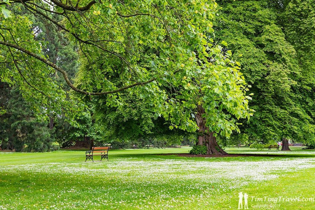 #2 Christchurch Botanic Garden (基督城植物園):植物園一角