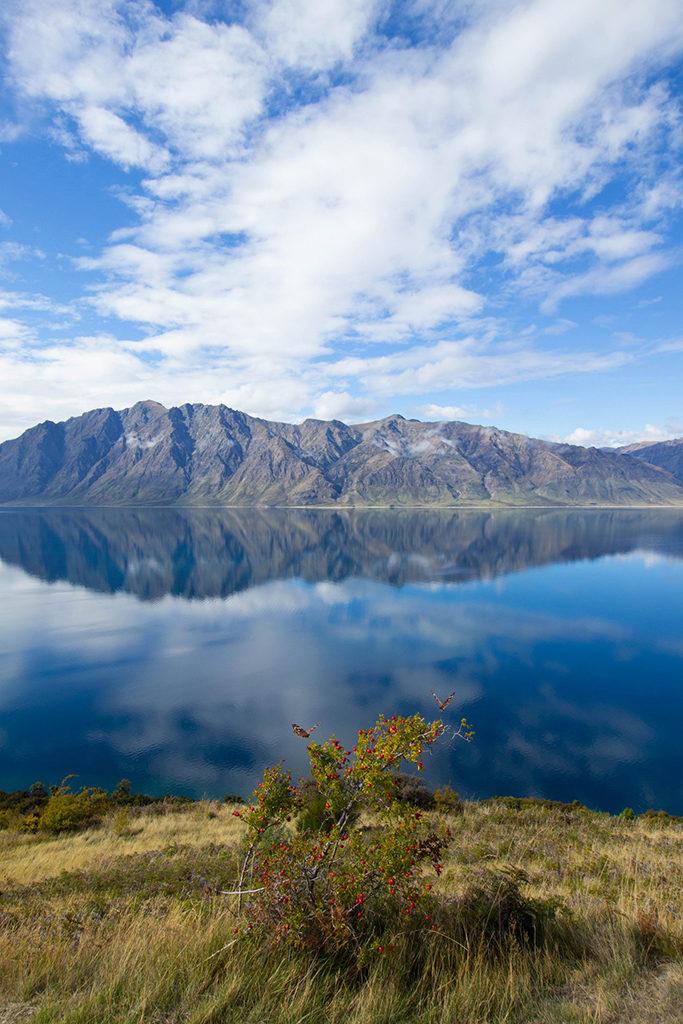 Fox Glacier 到 Wanaka 沿途景點 - #7 Lake Hawea Lookout (哈威亞湖觀景台)