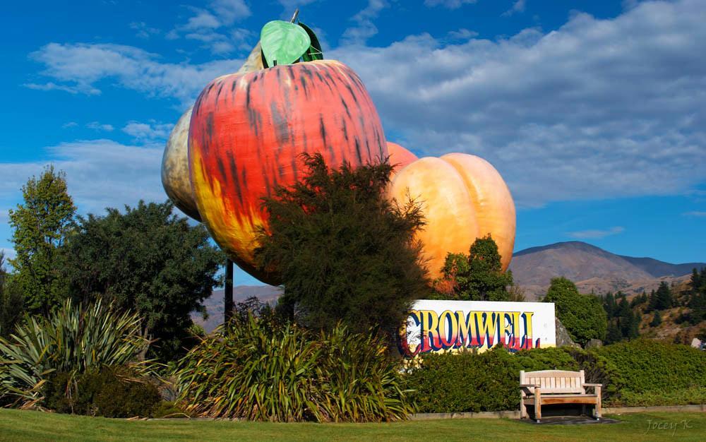 [2019] 紐西蘭 Cromwell 克倫威爾 | 水果小鎮 5大 必遊景點