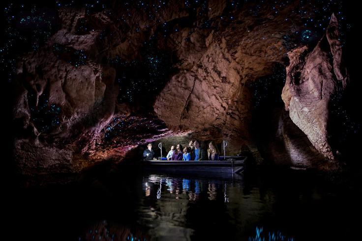 Te Anau 必遊景點#1 - Te Anua Glowworm Cave (蒂阿瑙螢火蟲洞體驗)
