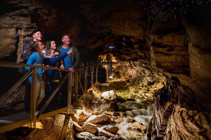 Te Anua Glowworm Cave (蒂阿瑙螢火蟲洞體驗):深入地底,藍光螢火蟲的大本營