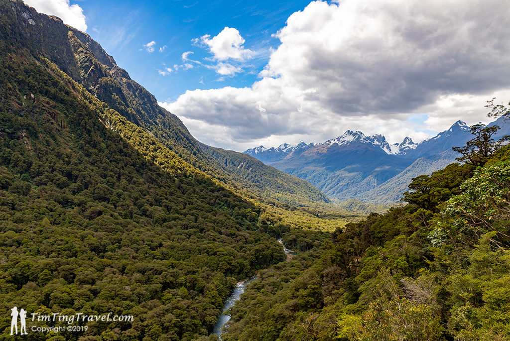 Te Anau 到 Milford Sound 沿途景點 #5 - Hollyford Valley Lookout (Pop's View Lookout)