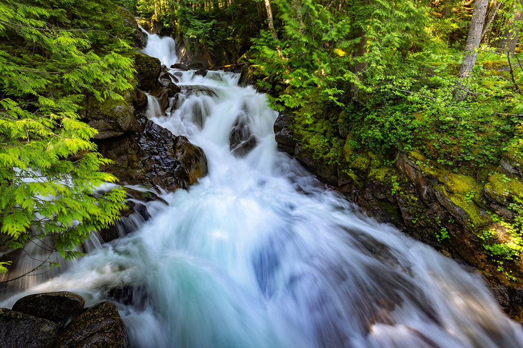 Te Anau 到 Milford Sound 沿途景點 #7 - Falls Creek Waterfall (瀑布溪瀑布)
