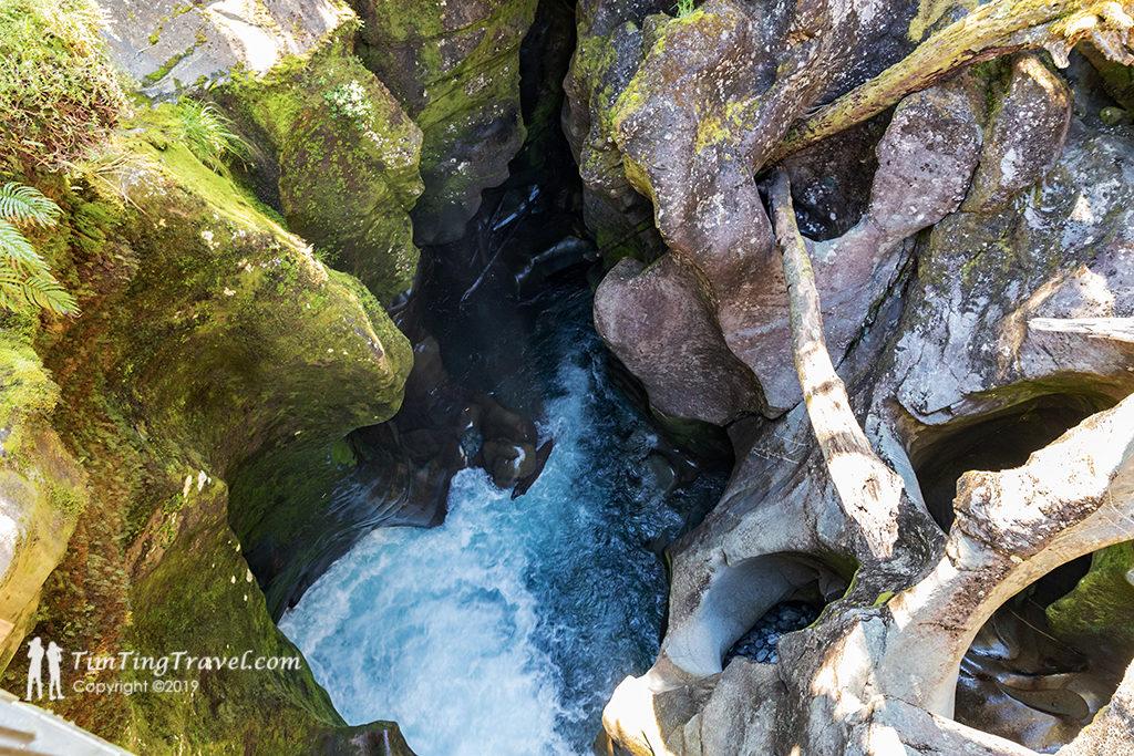 Te Anau 到 Milford Sound 沿途景點 #10 - The Chasm (裂谷步道)