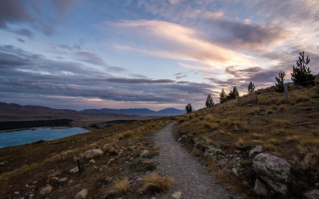 登山健行上 Mt John Observatory (約翰山天文台) 的步道:Mt John Walkway (約翰山步道)