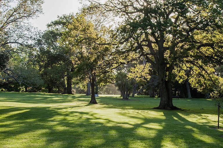 Auckland 必遊景點 #5 Auckland Domain (奧克蘭中央公園)