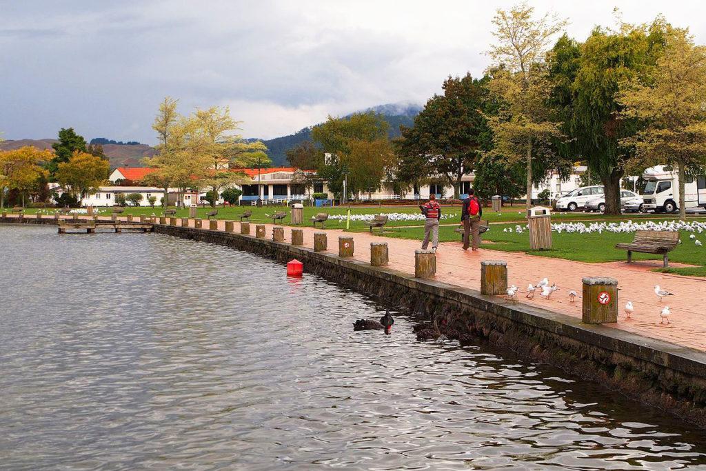 Lake Rotorua (羅托魯瓦湖) 景點 #1 -  Rotorua Walkways (羅托魯瓦步道)