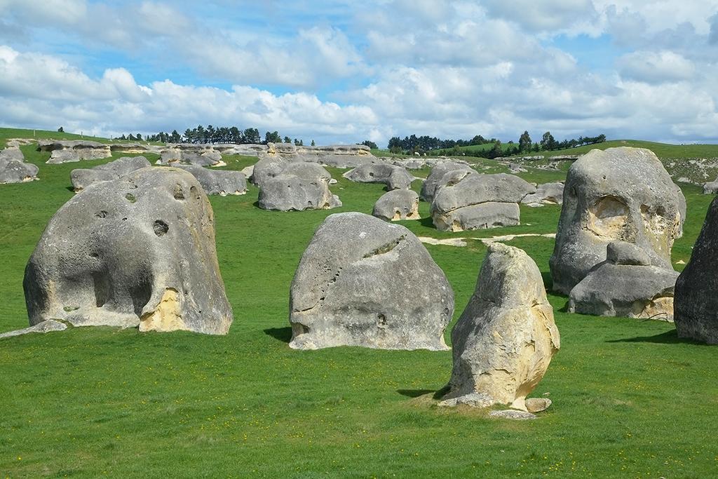 Oamaru 必遊景點 #8 - Elephant Rocks (象石群)
