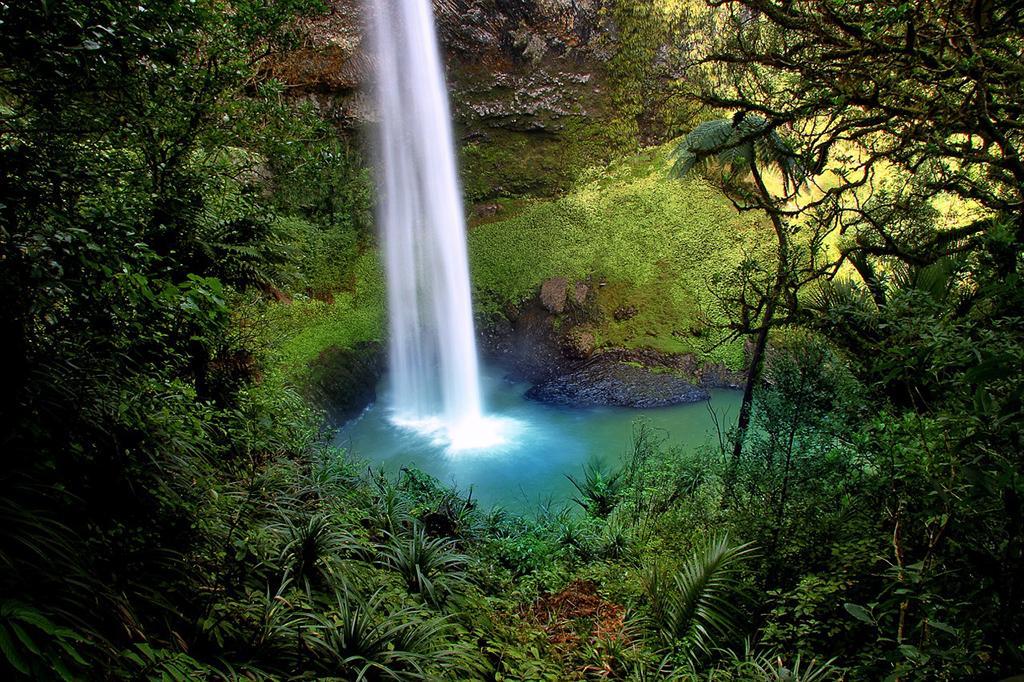 Hamilton 必遊景點 #3 - Bridal Veil Falls (新娘面紗瀑布)