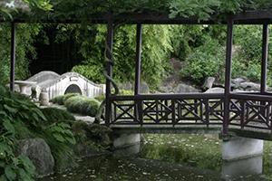 Chinese Scholars' Garden