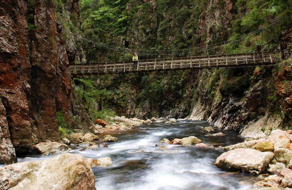 Coromandel 必遊景點 #3 - Karangahake Gorge (卡蘭加哈克峽谷)